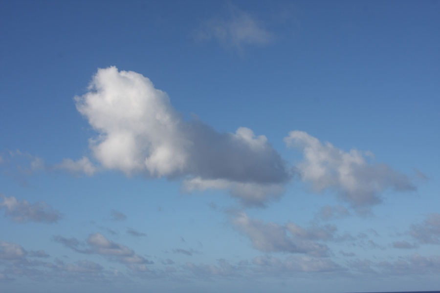 Photo: Cloud in the shape of howling dog